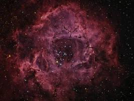 Rosette Nebula HaRGB by DoomWillFindYou