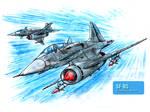 SF-85 in flight