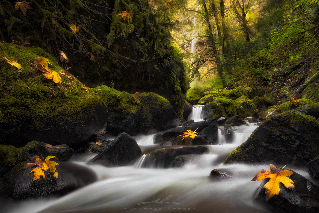 prelude to autumn by NWunseen
