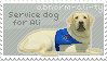 Service Dog for abnorm-ali-ty by Belleo