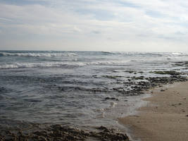 Rye Beach Stock by lovehorses14