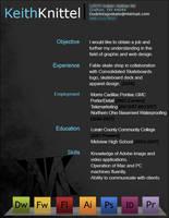 resume by dudeletsgoskate