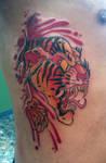 tiger rip