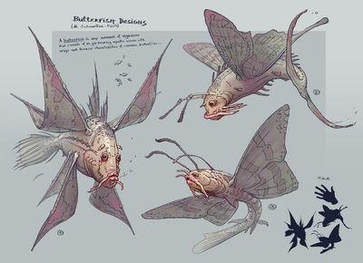 butterfish designs