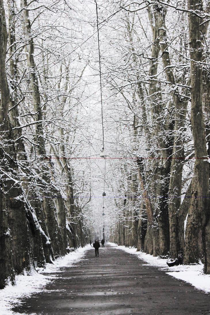 White Tree's by hutzimbl