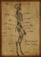 Anatomy of The Satyr by Shadowglove