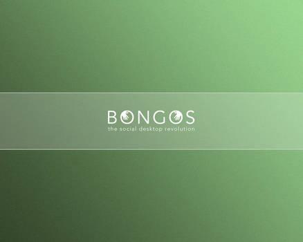 Bongos Wallpaper