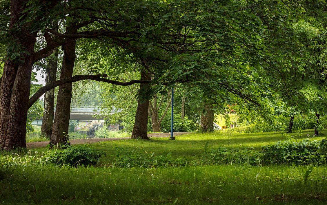 Finland, Summer 2015 7 by Dekus