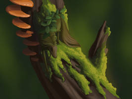 Pyx on Old Growth by fiachmara