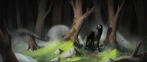 Misty Forest Wandering