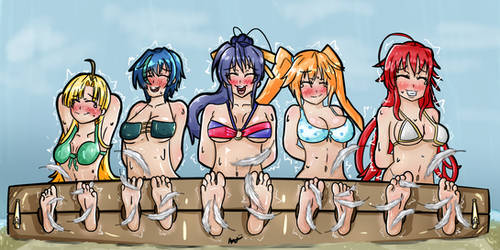 [Commission] Beachfront TkT (High School DxD)