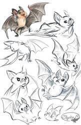 Vampire Bats by sharkie19