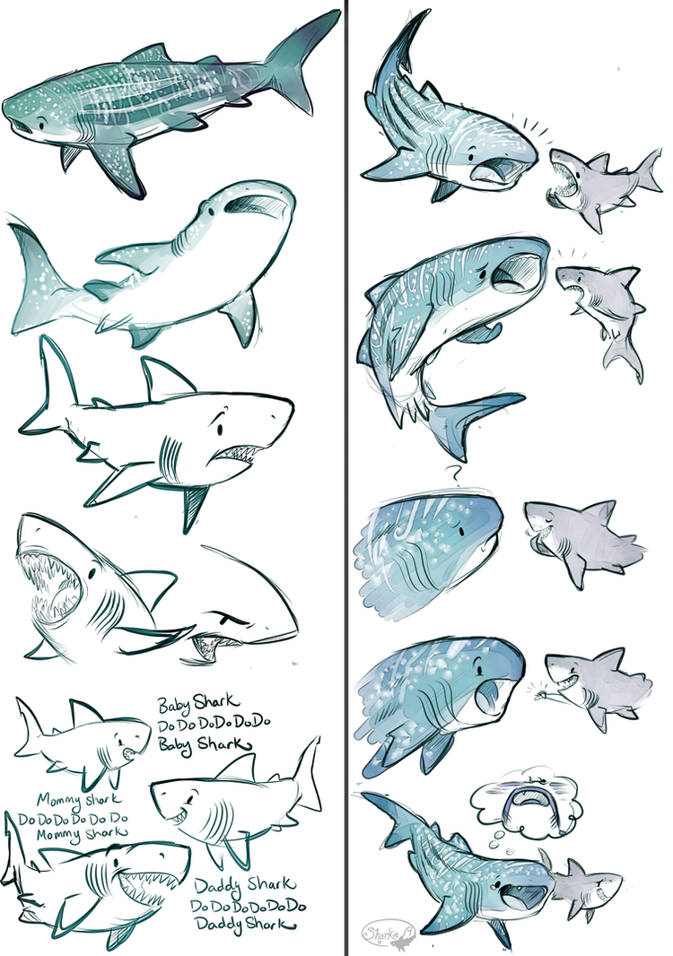 Whale Shark Line Drawing : Whale shark and great white by sharkie on deviantart
