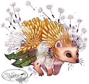 Dandelion Hedgehog