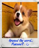 Son of Smile Dog ^_^ by FearOfTheBlackWolf