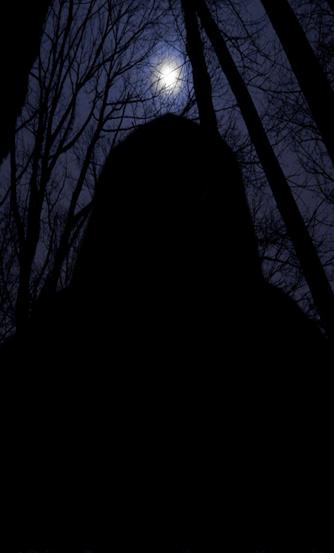 Don 39 T Go Into The Woods By Fearoftheblackwolf On Deviantart