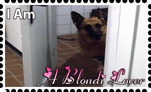 Downfall Stamps: Blondi by MrAngryDog