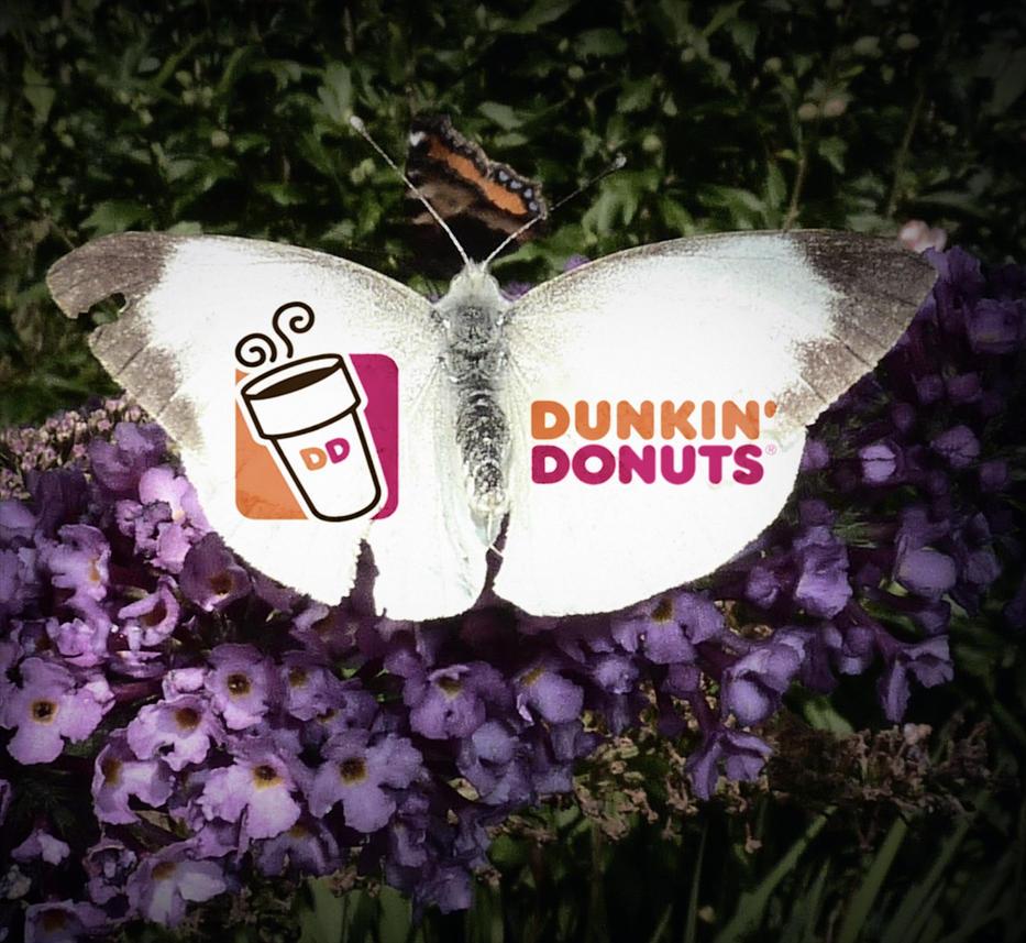 Dunkin Donuts Th Avenue And Coney Island Avenue