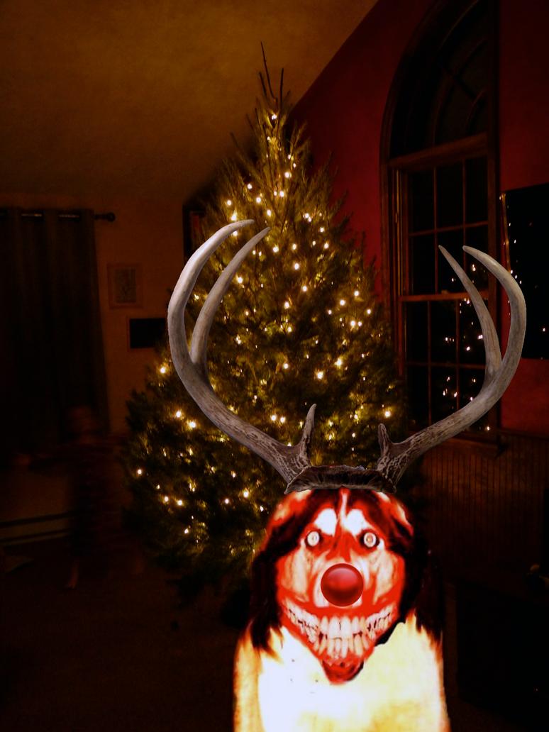 smile dog the red nosed reindeer by mrangrydog on deviantart