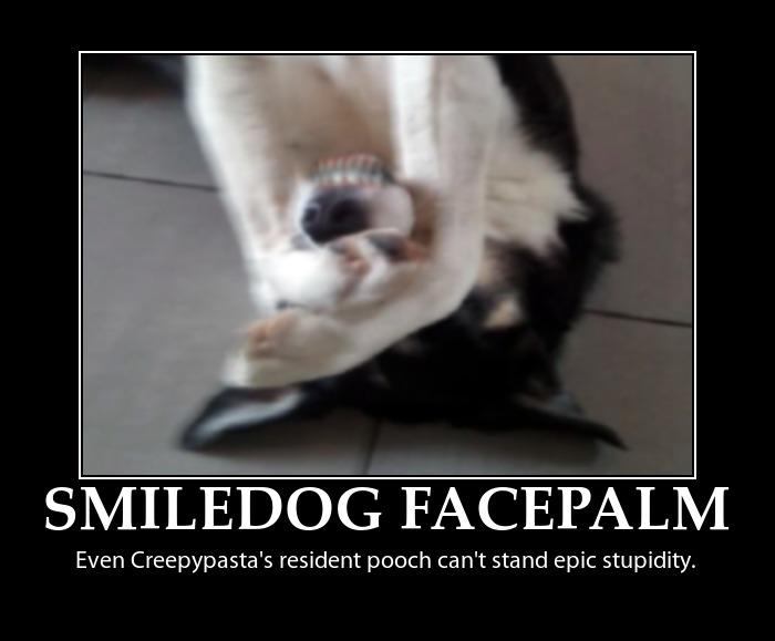 Stupid Dogs Shake