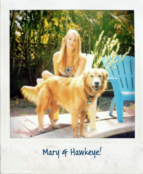 Hawkeye: Mary's Dog by MrAngryDog