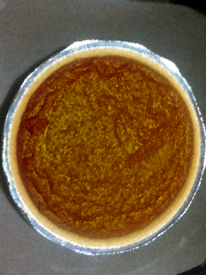 Pumpkin Dog Food Recipe