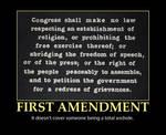 First Amendment Demotivator