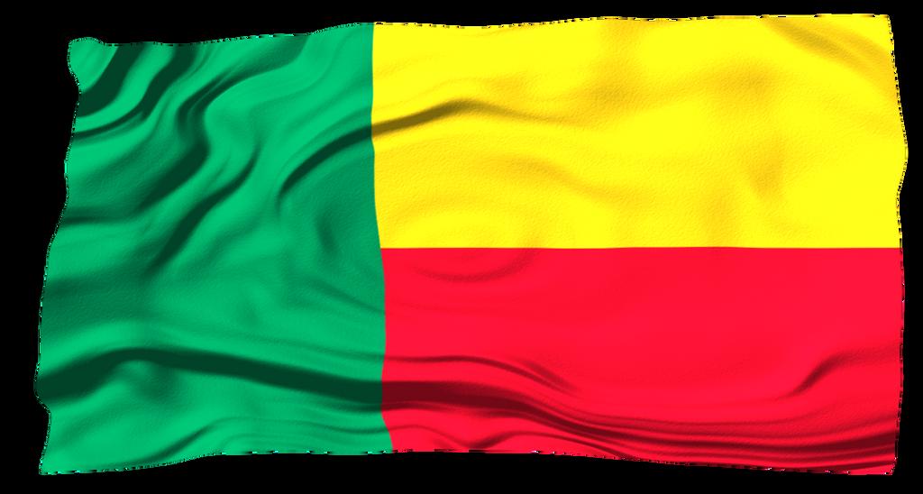 Flasg of the World: Benin by MrAngryDog on DeviantArt: mrangrydog.deviantart.com/art/flasg-of-the-world-benin-535433106