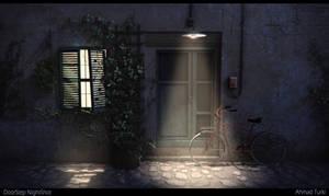 DoorStep NightShot
