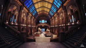 History Museum NightShot