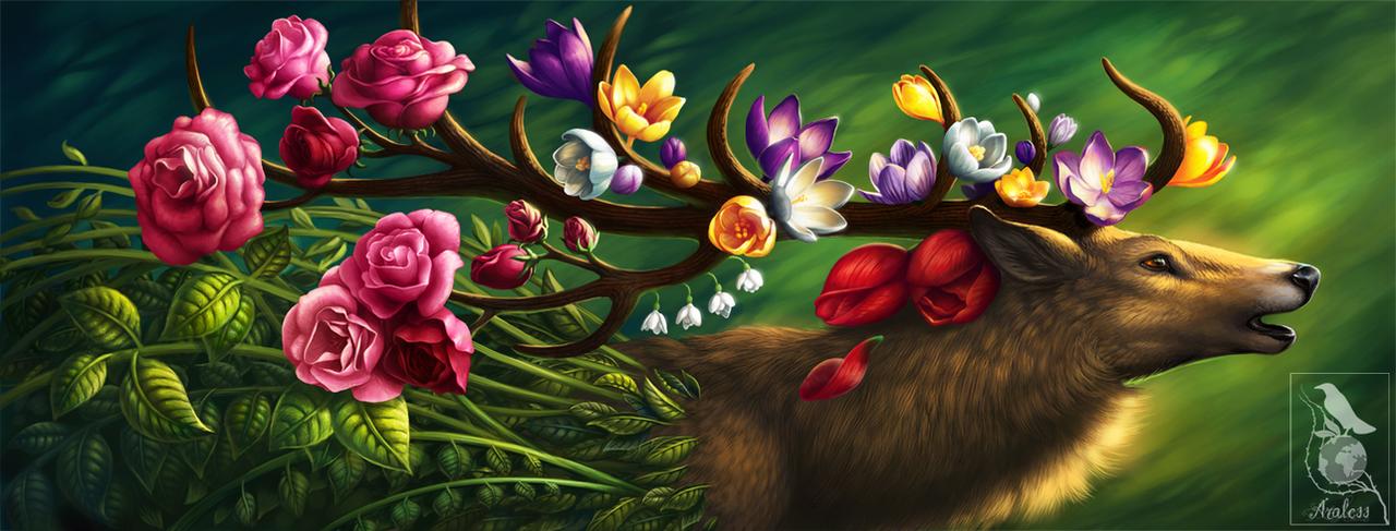 Eternal Spring by Araless