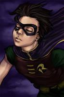 Robin Flying High by loonylucifer