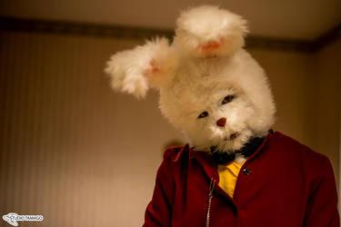 White rabbit in wonderland by StudioTamago