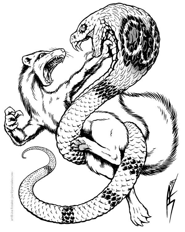 Cobra and Mongoose by joeartguy