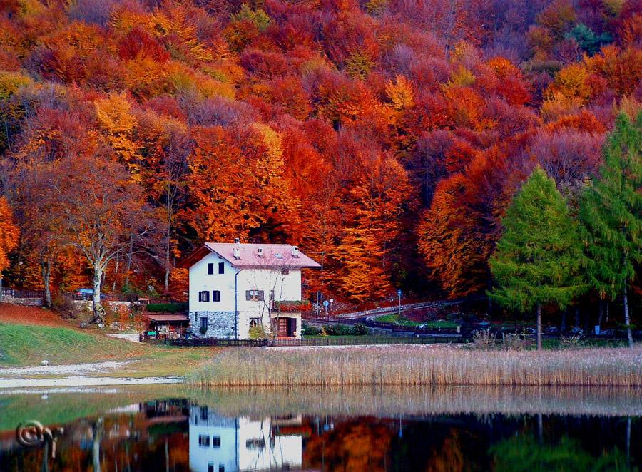 Autumn by Yagoryo