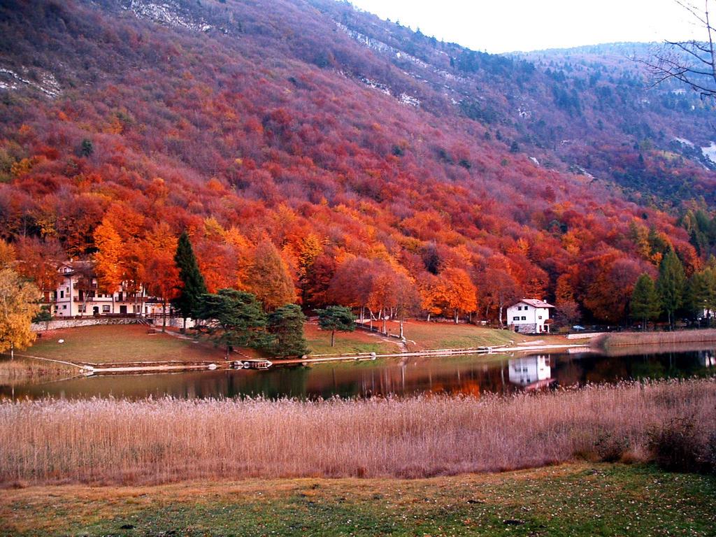 Autumn 1 by Yagoryo