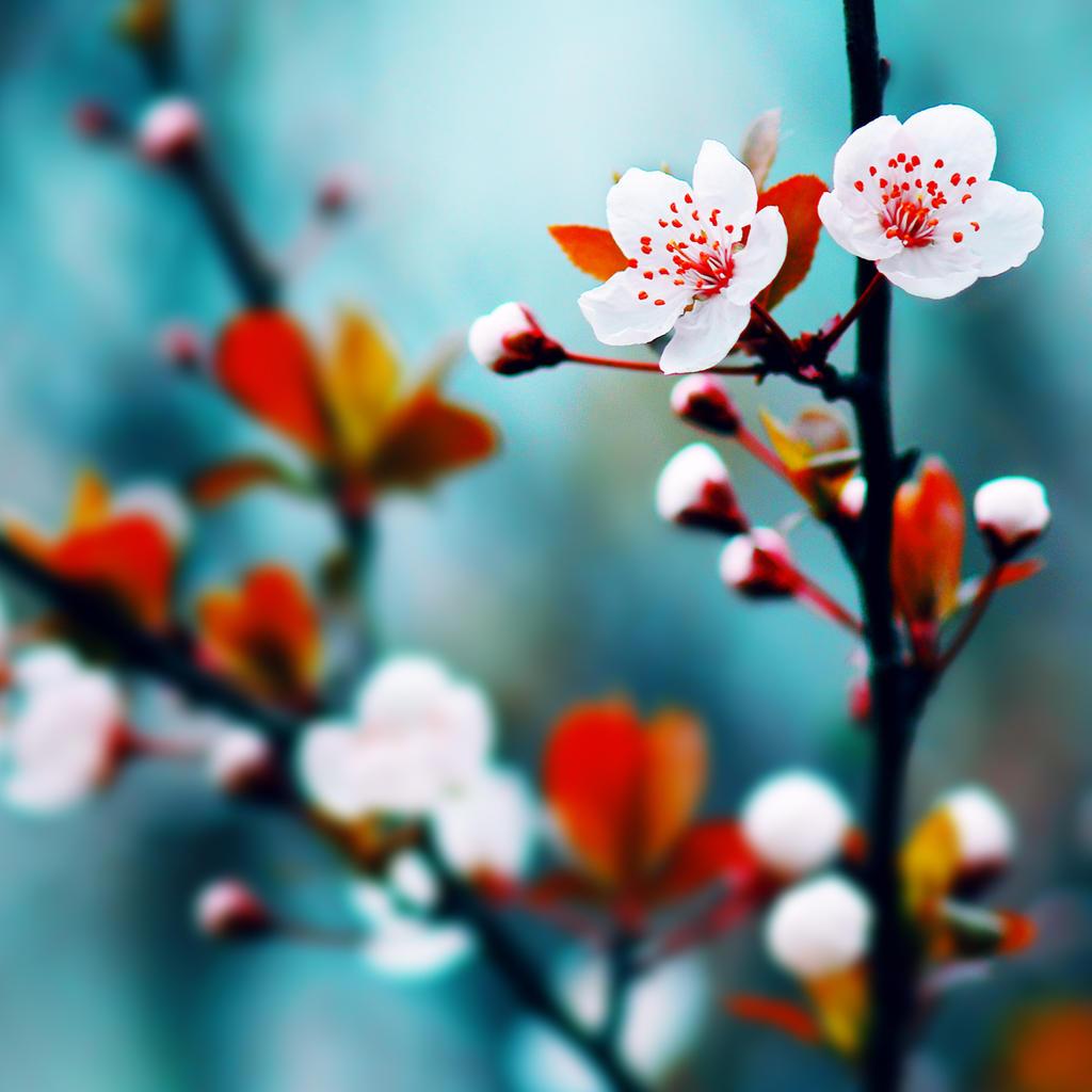 Spring talking by JunJun510