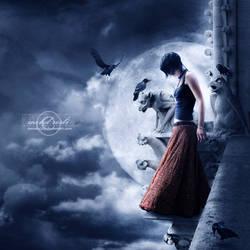 +Last Wish+ by moroka323