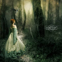 +Lost My Way+ by moroka323