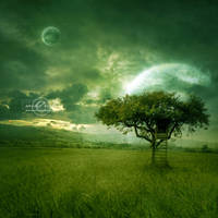 +Golden Dream+ by moroka323