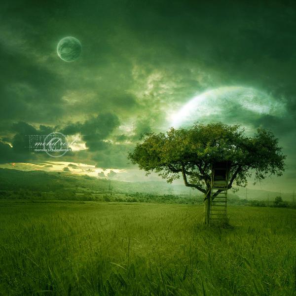 golden dream by moroka323 on deviantart