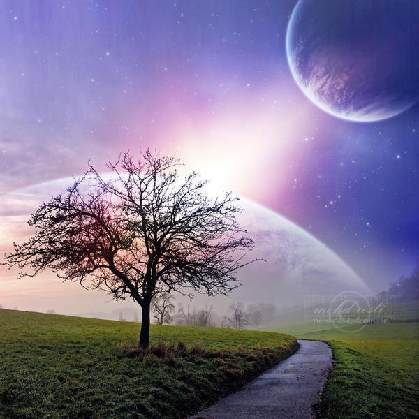 _Light_of_Dream__by_moroka323