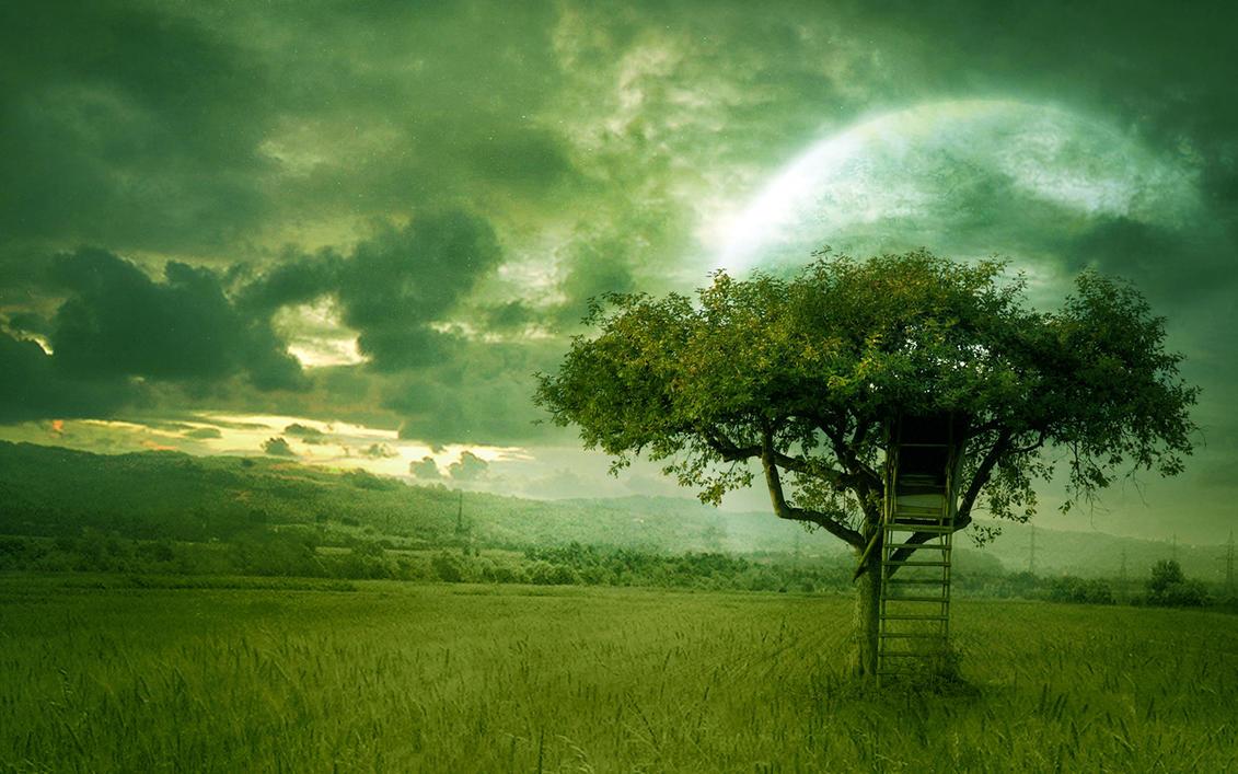 Imagini de toamna peisaje naturale poze cu anotimpuri