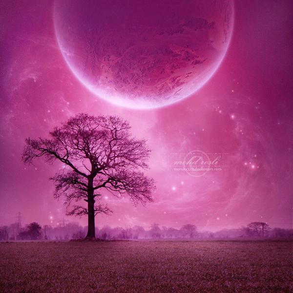 _Violet_Dream__by_moroka323 dans Divers