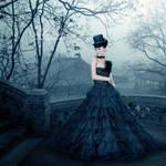 +Black Rose+