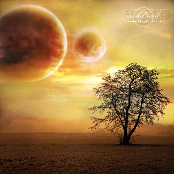 +Desert Dream+