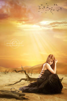 +Light of Hope+