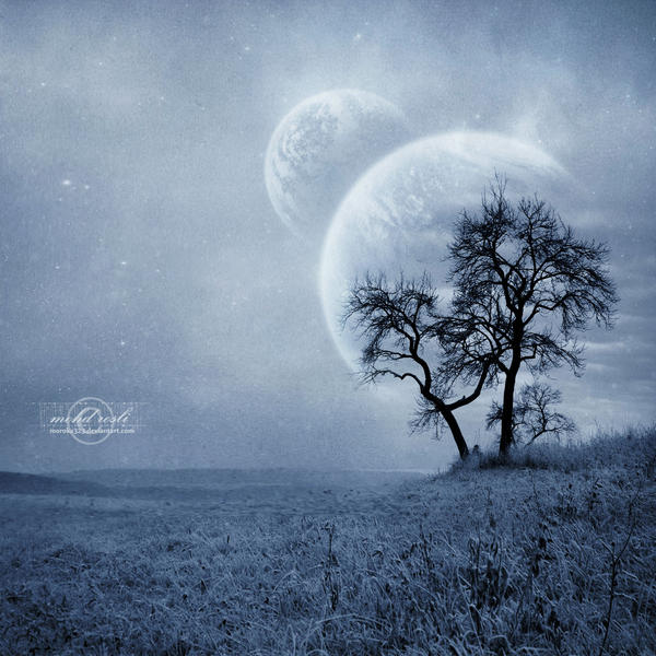 +Winter Dream+