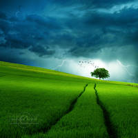 +Stormy Day+ by moroka323