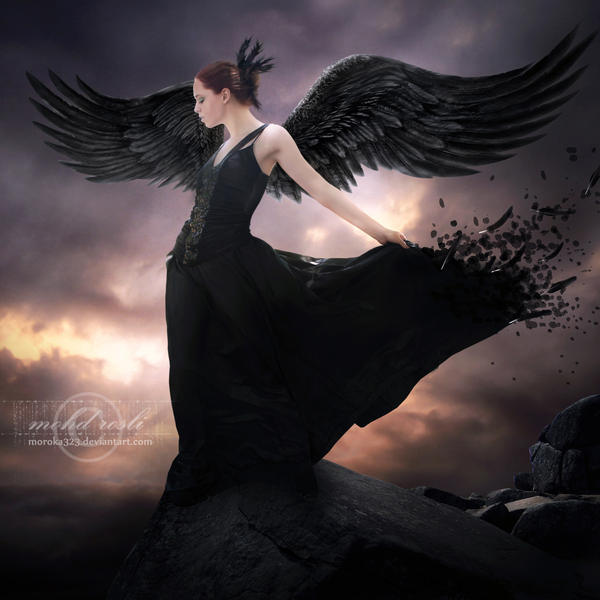 Fotografije anđela - Page 13 _Spread_Your_Wings__by_moroka323